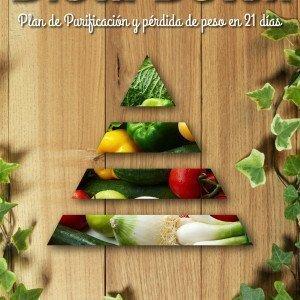 Dieta Detox Libro